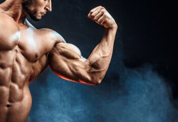exercice biceps musculation